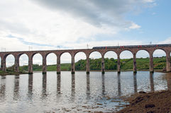 Train and berwick viaduct Stock Images