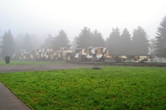 Train blindé en brouillard Image libre de droits