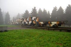 Train blindé en brouillard Photos stock