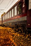 Train blow the leaves royalty free stock photo