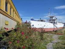 Train and boat at the lakeside titicaca in roses Royalty Free Stock Image