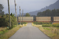 Train Box Cars Crossing Rural Road. Box cars cross a single lane, paved rural road Stock Images