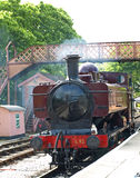 Train at Buckfastleigh Station Royalty Free Stock Photos