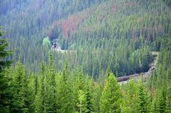 Train in the Canadian Rockies. Royalty Free Stock Photography