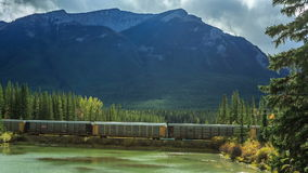 Train in the canadian rockies stock video