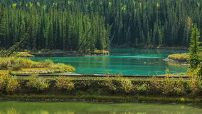 Train in the canadian rockies stock video footage