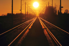 Train cargo in railroad. At a sunset Royalty Free Stock Photos