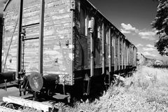Train carriage. On track. Infrared image of old abandoned cargo transport vehicles by field Stock Image