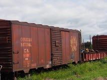 Train Cars At The Alberta Railway Museum Royalty Free Stock Image