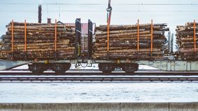 Train Cars With Logs on Tracks Royalty Free Stock Photo