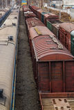 Train cars in the parking lot Royalty Free Stock Image