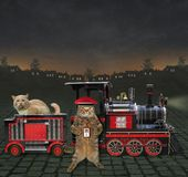 Train with a cat royalty free illustration