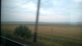 Train, chemin de fer, fenêtre de train, champ jaune, arbres verts, ciel bleu banque de vidéos