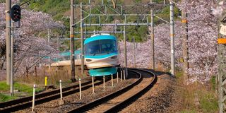 Train in cherry blossom stock photography