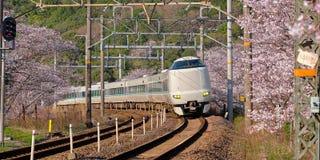 Train in cherry blossom stock photo