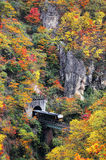 A train coming out of a tunnel onto a bridge over Naruko Gorge with colorful autumn foliage Stock Photo