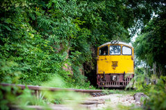 Train is Coming Royalty Free Stock Images