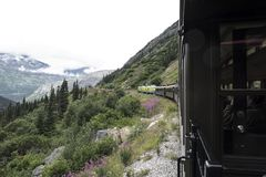 Train on curved mountain in Alaska mountains. With snowcapped mountains in the background and purple flowers and evergreens in the foreground stock photos