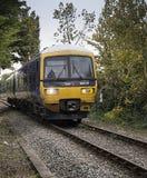 Train d'âne de Marlow Images libres de droits