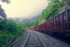 Train de chemin de fer et de fret passant par la jungle et les montagnes et allant à la cascade de Dudh Sagar photo stock