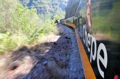 Train de Chepe Photographie stock libre de droits