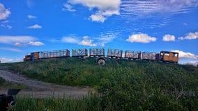 Train de marais dans le lac Irlande Boora Image stock