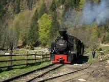 Train de Mocanita sur la vallée de Vaser Photo stock