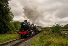 Train de vapeur avec la plume de la fumée Photographie stock libre de droits