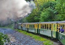 Train de vapeur en Roumanie Photographie stock libre de droits