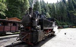 Train de vapeur sur la vallée de Vaser images stock