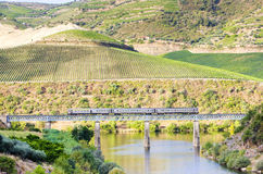Train in Douro Valley. Train on railway viaduct in Douro Valley, Portugal Stock Image