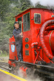 Train driver Royalty Free Stock Image