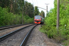 Train. Goes by rail around the forest Royalty Free Stock Photography