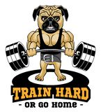 Train Hard Or Go Home. Motivational Quote for Fitness. Creative sport poster concept. royalty free illustration
