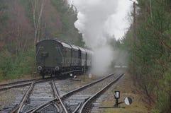 Train Harry. Stock Image