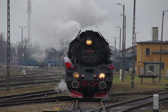 Train Harry. Stock Photos