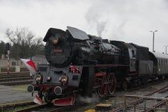 Train Harry. Stock Photo