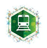 Train icon floral plants pattern green hexagon button vector illustration
