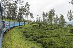 Train from Kandy to Ella in Sri Lanka. The train ride from Kandy to Ella is one of the most beautiful travels by train in the world. For seven hours the train is Royalty Free Stock Photos