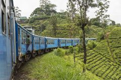Train from Kandy to Ella in Sri Lanka. The train ride through hill country from Kandy to Ella is one of the most beautiful travels by train in the world. For Royalty Free Stock Images