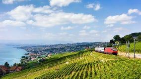 Train at Lavaux Vineyard Terraces at Lake Geneva Alps. Running train at Lavaux Vineyard Terraces hiking trail at Lake Geneva and Alps, Lavaux-Oron district Stock Image