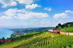 Train at Lavaux Vineyard Terraces Lake Geneva Alps. Lavaux, Switzerland - August 30, 2016: Running train at Lavaux Vineyard Terraces hiking trail at Lake Geneva stock images
