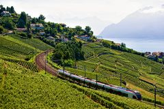 Train at Lavaux Vineyard Terraces at Lake Geneva Swiss Alps. Running train at Lavaux Vineyard Terraces hiking trail at Lake Geneva and Swiss Alps, Lavaux-Oron Stock Images