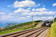 Train in Lavaux Vineyard Terraces near Lake Geneva Swiss Alps. Running train in Lavaux Vineyard Terraces hiking trail near Lake Geneva and Swiss Alps, Lavaux Stock Photos