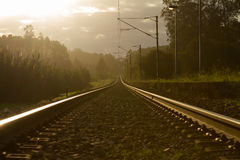 Train Line. Empty train line against woods and sunlight stock photos