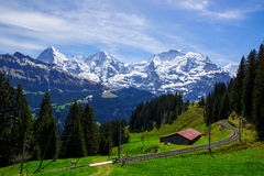 Train line running through the Swiss Alps Royalty Free Stock Image