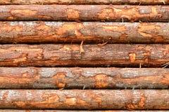 Train Logs Royalty Free Stock Image