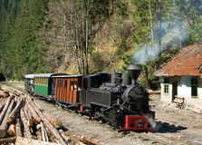 Train in Maramures forest. The most well-known mocanita runs in the Vaser Valley in Maramures County. This railway was constructed in the period 1933-1935 and Stock Photography