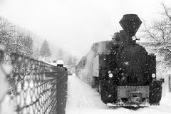 TRAIN IN MARAMURES FOREST, winter time Stock Photos