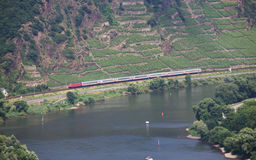 Train In Moselle Valley Drving Along Vineyards Royalty Free Stock Images